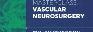 A 7-a editie a Masterclass-ului neurochirurgical Neurochirurgia vasculara